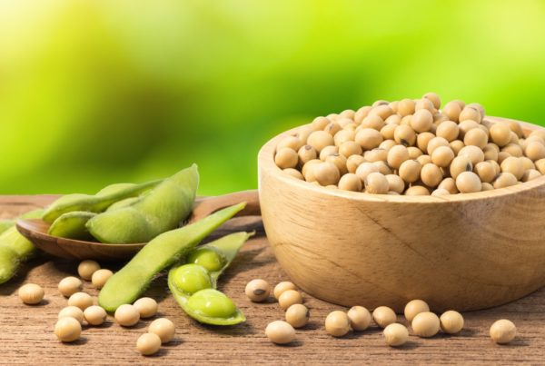 soya y menopausia