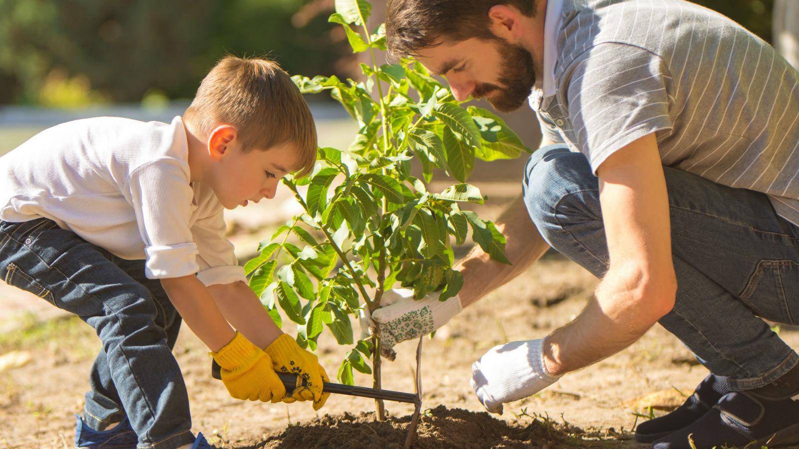 Sembrar un jardín es una saludable actividad familiar