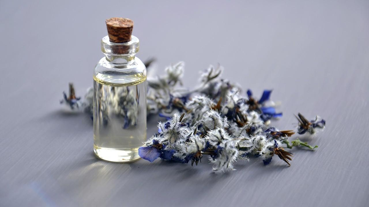 El aceite de borraja y el aceite de onagra: ¿ayudan a aliviar los síntomas del eczema?