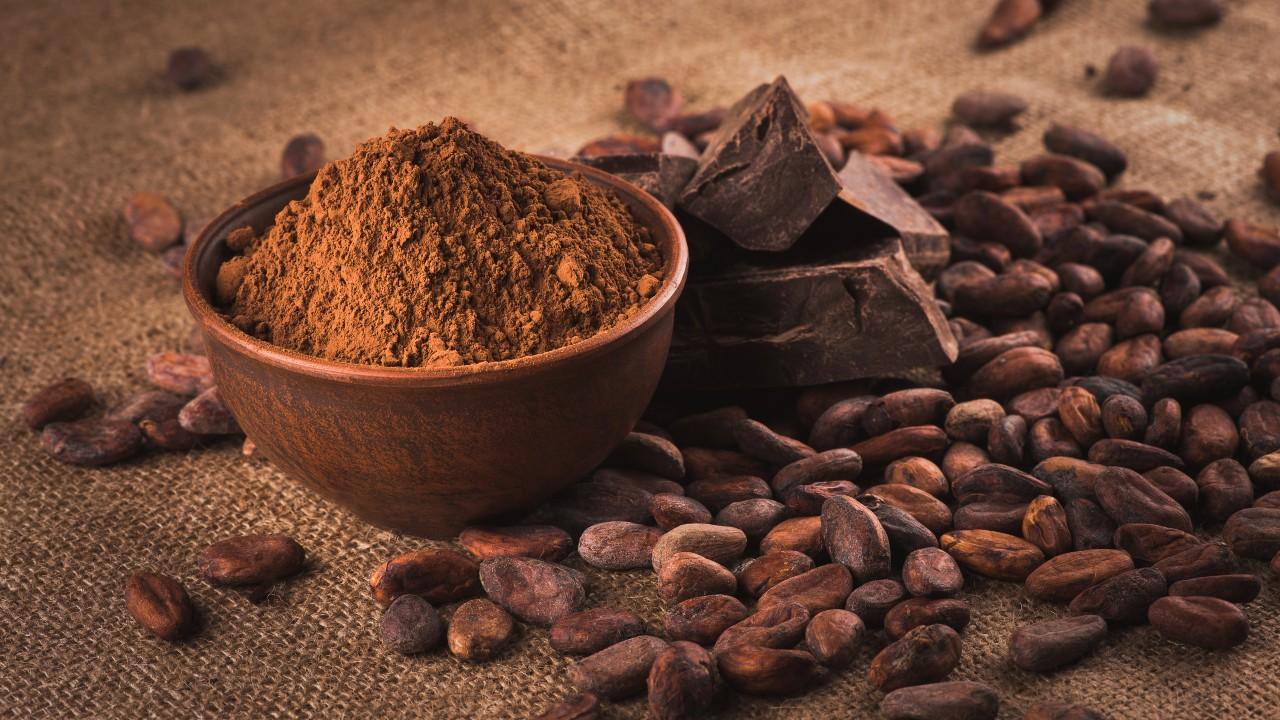 El cacao podría mejorar la función cognitiva en los ancianos