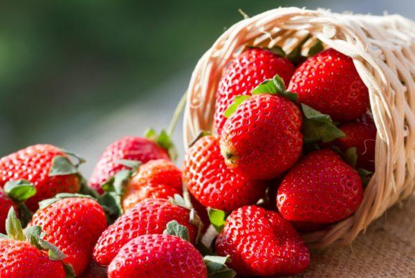 El consumo de fresas reduce el colesterol