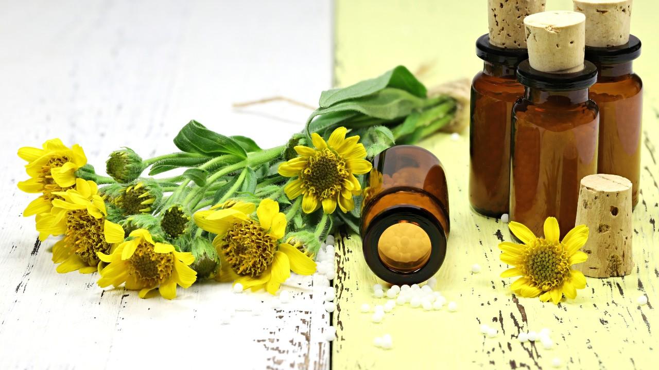 Árnica – usos medicinales