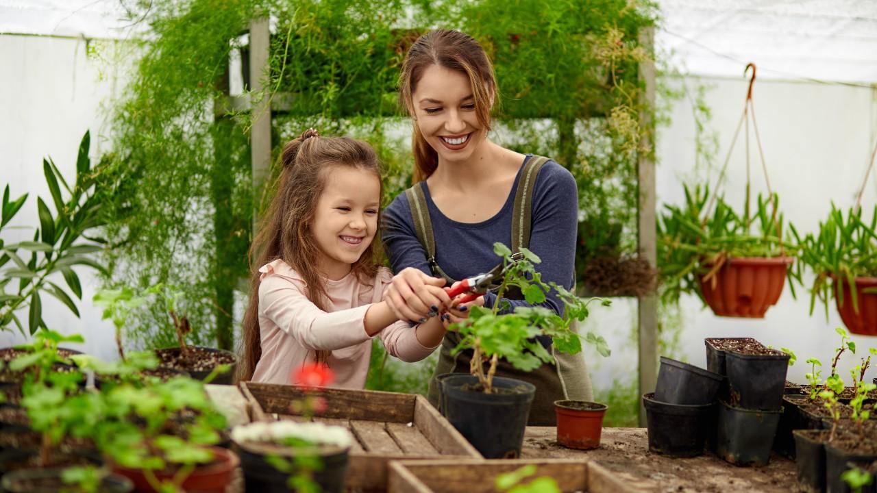 Evita peligros ¡en tu propio jardín!