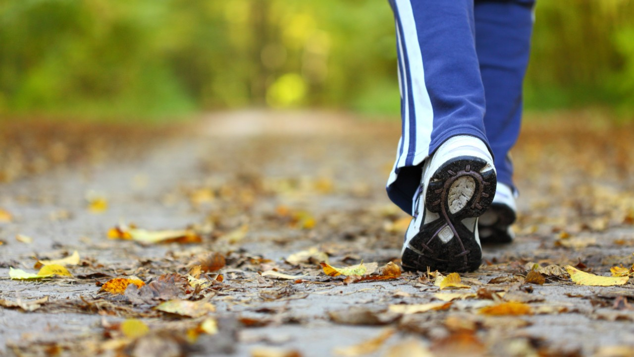 El poder de una buena caminata diaria