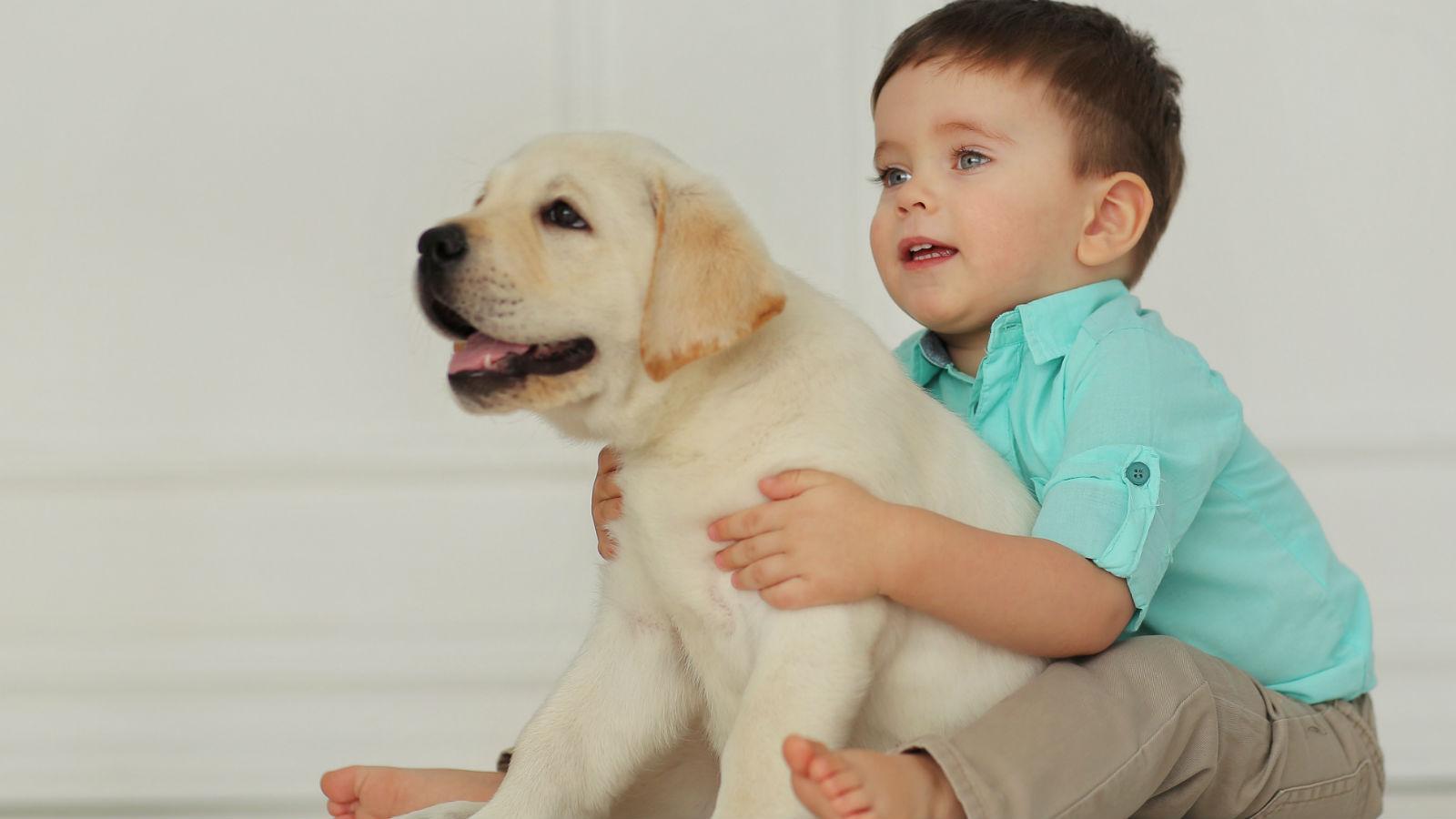 niño pequeño abrazando perro