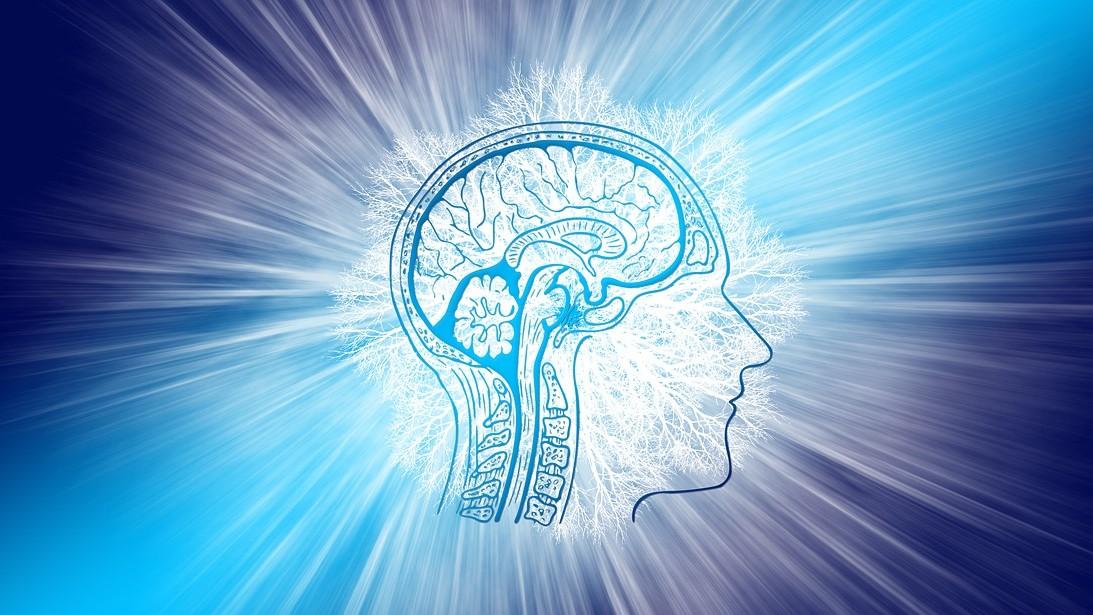 ¿Ayuda al cerebro tener un trabajo estimulante?