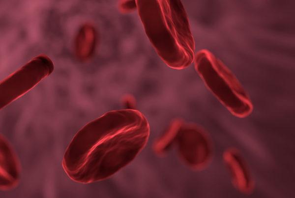 grafica-leucemia