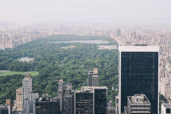 disminuyen cifras en NY