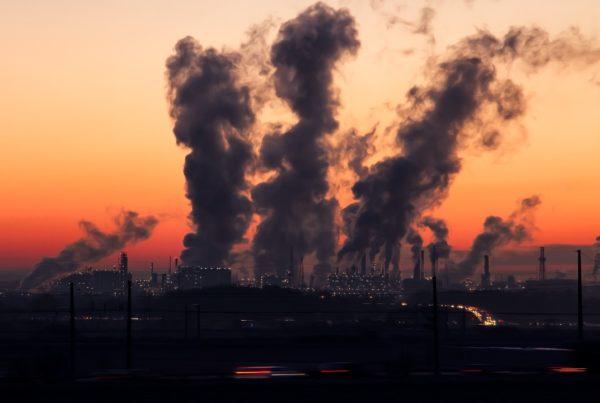 contaminación afecta mortalidad