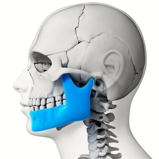 Nueva malla artificial para reconstruir la mandíbula