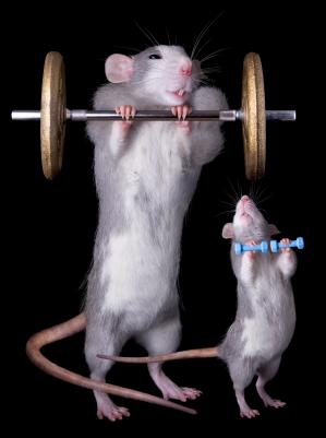 El ejercicio podría ser el arma secreta para mantenerte joven
