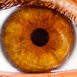 Relacionan el uso de ciertos antibióticos con el desprendimiento de la retina