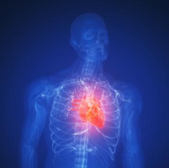¿Hay marcha atrás en la enfermedad cardíaca?