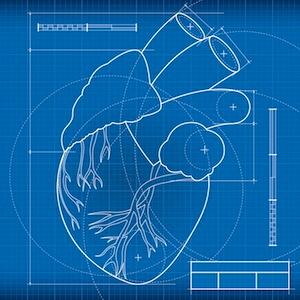 Una nueva válvula aprobada por la FDA evita cirugías a corazón abierto