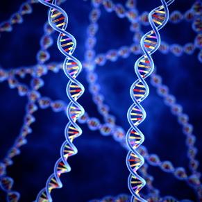 Encuentran 50 genes relacionados con la degeneración macular