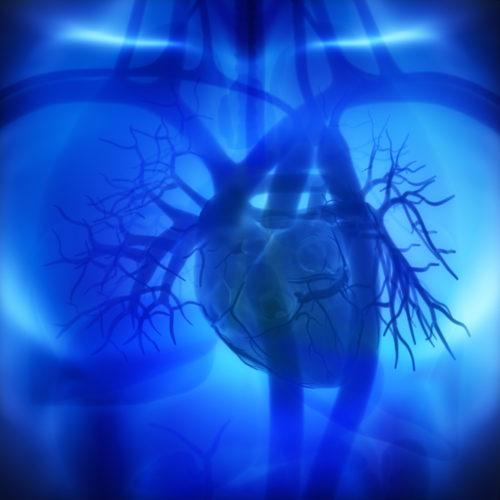 La angina de pecho: cómo afecta a tu corazón