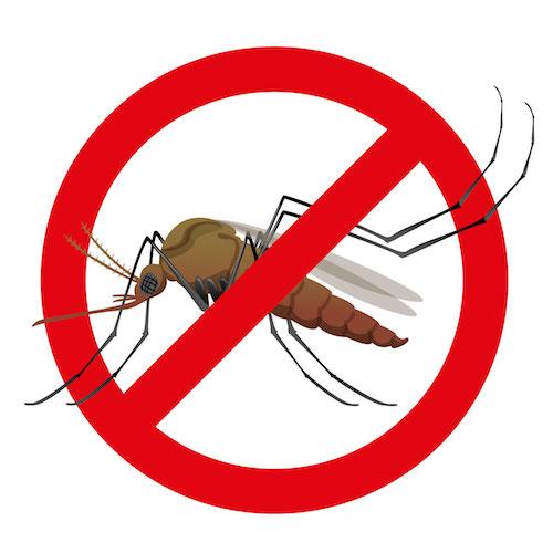 Actualización sobre el Virus del Zika