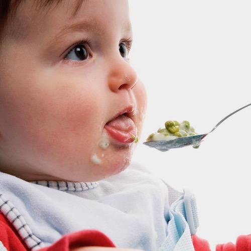 El arte de preparar comida para bebés en casa