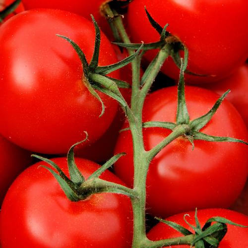 Comer más tomates podría reducir el riesgo de accidente cerebrovascular (ACV)