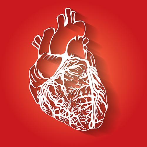 Preguntas y respuestas sobre el trasplante de corazón