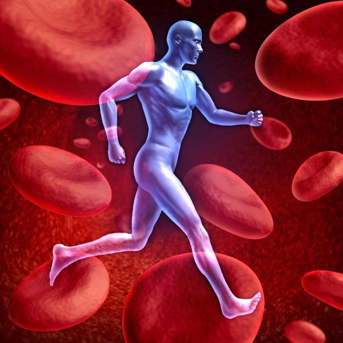 El ejercicio mejora la circulación en los prediabéticos